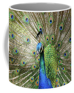 Coffee Mug featuring the photograph Peacock Indian Blue by Sharon Mau