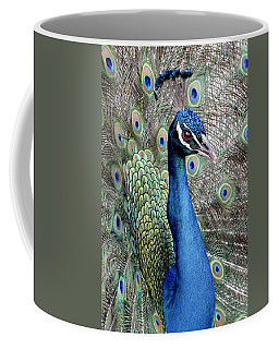 Peacock Portrait Coffee Mug by Bob Slitzan