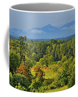 Peaks Of Otter After The Rain Coffee Mug