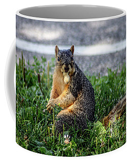 Coffee Mug featuring the photograph Peanut by Joann Copeland-Paul