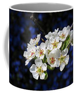 Pear Blossoms And Georgia Blue 1 Coffee Mug