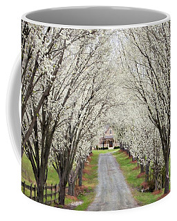 Coffee Mug featuring the photograph Pear Tree Lane by Benanne Stiens