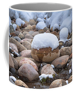 Pebble Creek Coffee Mug by Sean Allen