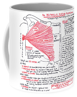 Pectoralis Major Coffee Mug