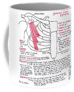 Pectoralis Minor Coffee Mug