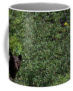 Peek A Bear Coffee Mug