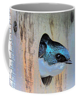 Peek-a-blue Coffee Mug