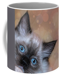 Peek-a-boo 2 Coffee Mug