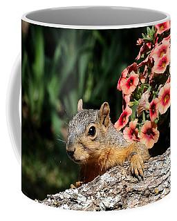 Peek-a-boo Squirrel Coffee Mug