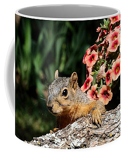 Peek-a-boo Squirrel Coffee Mug