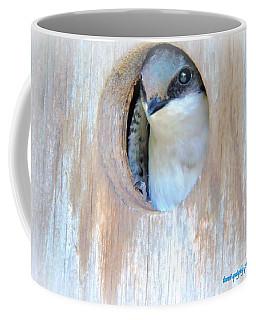 Peek Of Blue  Coffee Mug
