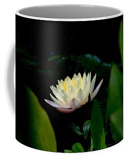 Peekaboo Lemon Water Lily Coffee Mug