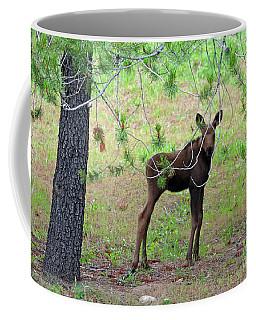 Peeking At Me Coffee Mug