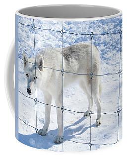 Peer Coffee Mug