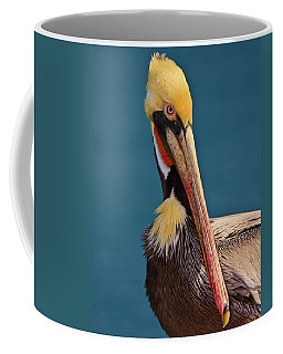 Coffee Mug featuring the photograph Pelican by Beth Sargent
