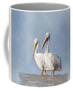 Coffee Mug featuring the photograph Pelican Duo by Kim Hojnacki