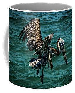 Pelican Glide Coffee Mug