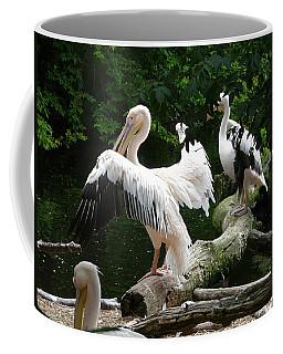 Pelican Hideaway Coffee Mug