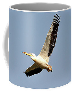 Pelican  Coffee Mug by Manjot Singh Sachdeva