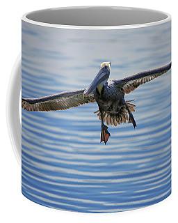 Pelican On Approach Coffee Mug