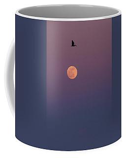 Pelican Over The Moon Coffee Mug