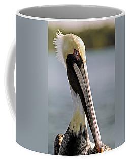 Pelican Portrait Coffee Mug by Sally Weigand