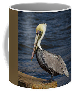 Coffee Mug featuring the photograph Pelican Profile 2 by Jean Noren