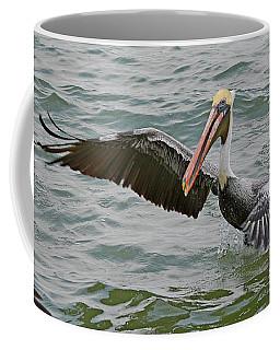 Pelican Take Off Coffee Mug