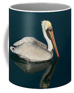 Pelican With Reflection Coffee Mug