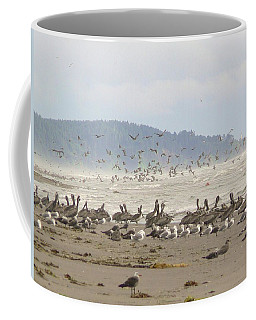 Pelicans And Gulls Coffee Mug by Pamela Patch