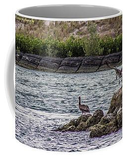 Pelicans  Coffee Mug by Nance Larson
