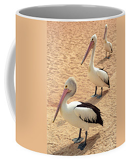 Pelicans Seriously Chillin' Coffee Mug