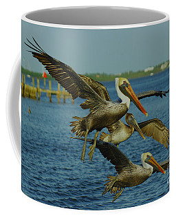 Pelicans Three Amigos Coffee Mug