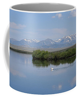 Pelicans Walden Res Walden Co Coffee Mug