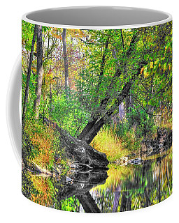 Pennsylvania Country Roads - Autumn Colorfest In The Creek No. 8 - Shade Creek Huntingdon County Coffee Mug by Michael Mazaika