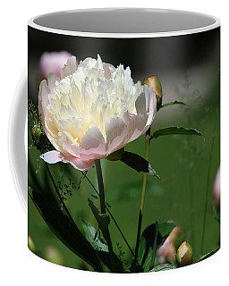 Coffee Mug featuring the photograph Peony Beauty by Rick Morgan