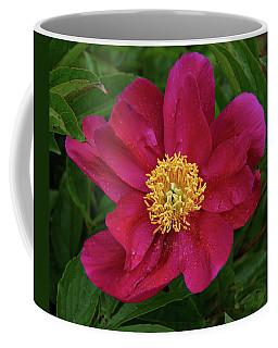Coffee Mug featuring the photograph Peony In Rain by Sandy Keeton