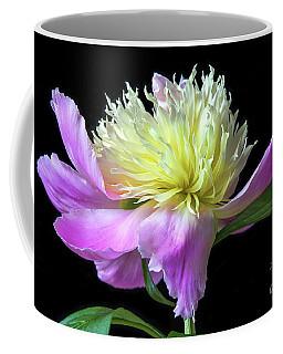 Peony On Black Coffee Mug