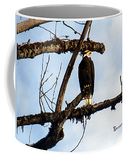 Coffee Mug featuring the photograph Perched Bald Eagle by Sadie Reneau