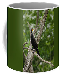 Perched Double-crested Cormorant Coffee Mug