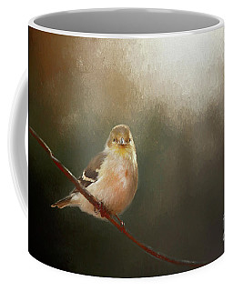 Coffee Mug featuring the photograph Perched Goldfinch by Darren Fisher
