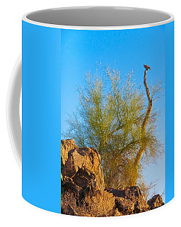 Perching Dove Coffee Mug