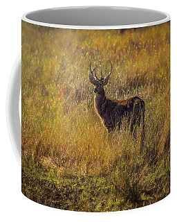 Pere David's Deer Buck 2 Coffee Mug