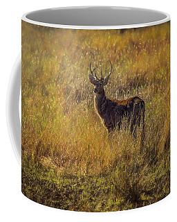 Pere David's Deer Buck 2 Coffee Mug