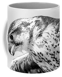 Peregrine Falcon In Black And White Coffee Mug