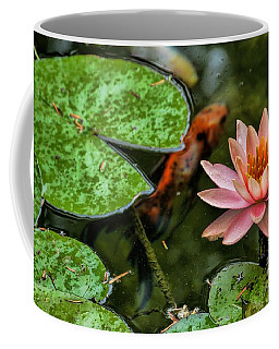 Coffee Mug featuring the photograph Perfect Beauty And Koi Companion by Diana Mary Sharpton