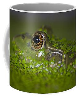 Perfect Camouflaging Coffee Mug