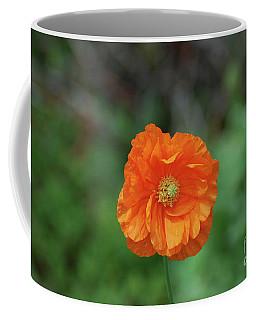 Perfect Orange California Poppy Flower Blossom Coffee Mug by DejaVu Designs