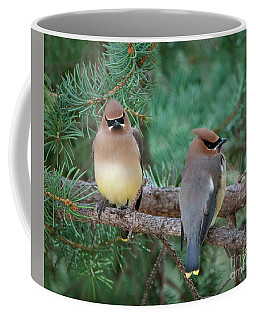Perfect Pair Coffee Mug