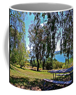 Perfect Picnic Place Coffee Mug